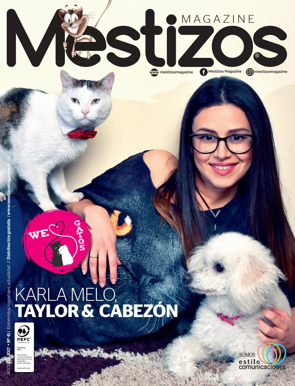 mestizos41