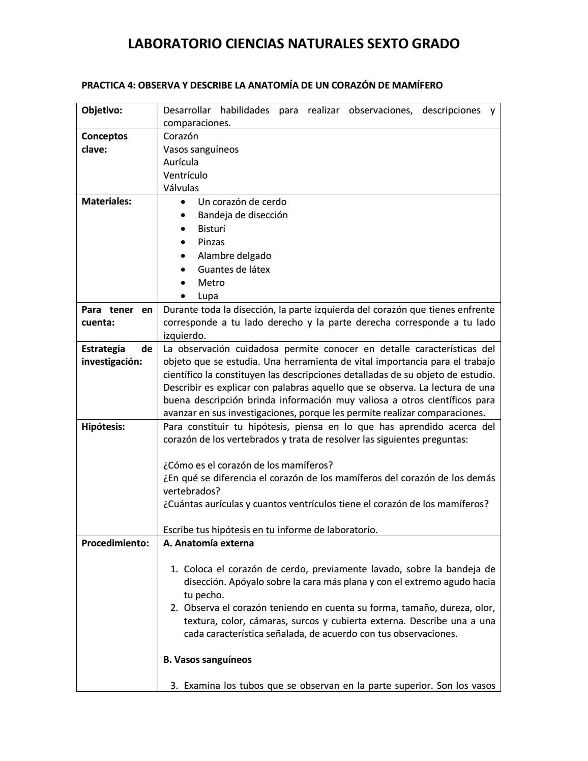 Practica 4 bio sexto by katherine cadavid - issuu
