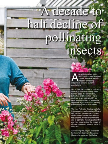 Page 93 of A decade to halt decline of pollinating insects