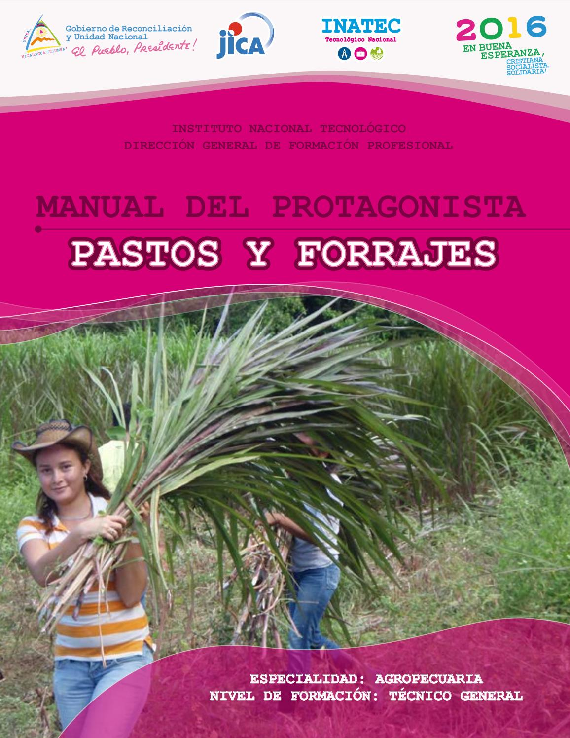 manual del barista profesional pdf
