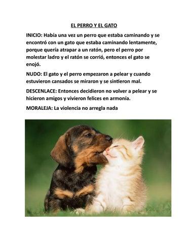 El Perro Y El Gato By Jair Paredes Issuu