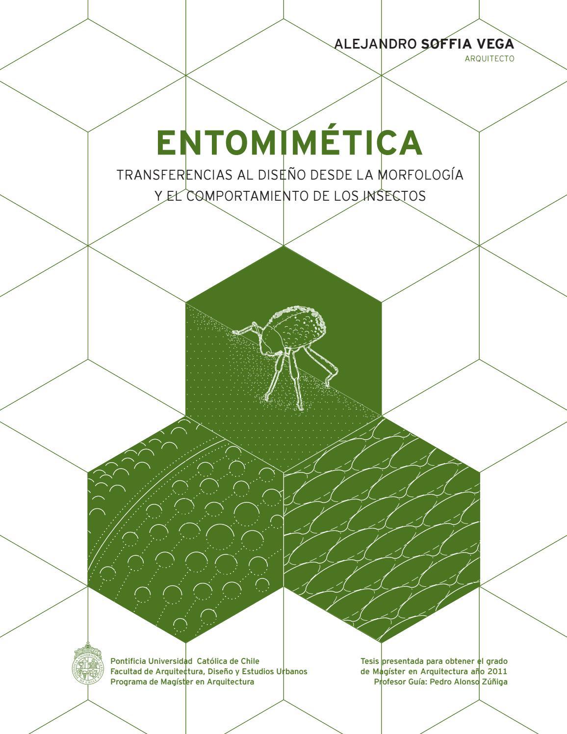 Entomimicry entomimetica by alejandro soffia issuu for Programas de arquitectura y diseno