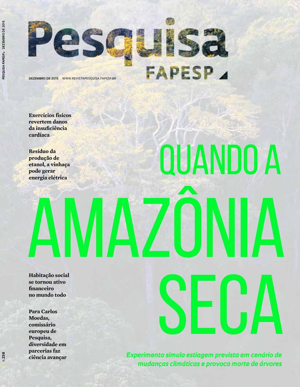 Quando a Amazônia seca by Pesquisa Fapesp - issuu 4e5d27070aa56
