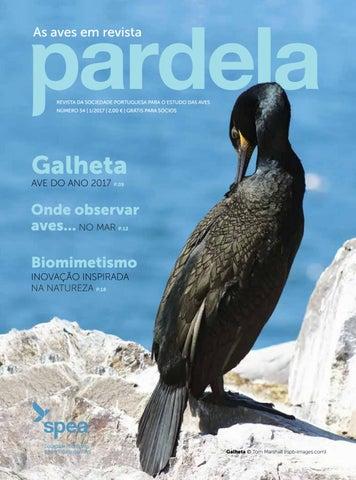 6e7c11604 Pardela Nº 54 by SPEA Birdlife - issuu
