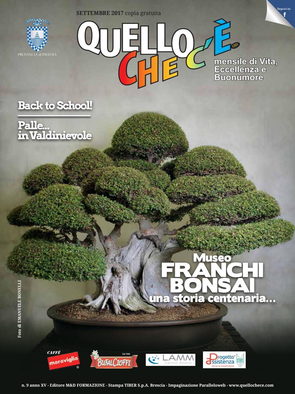 Quello che c è Settembre 2017 by quellochece.com - issuu e4dff1cfc91