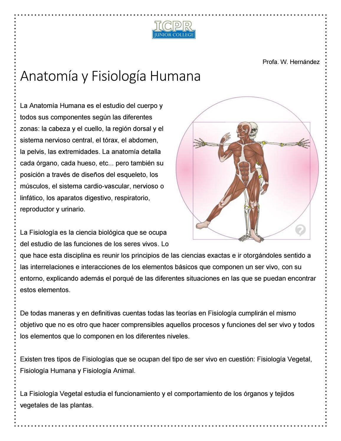 Conceptos anatomía y fisiología humana by Wilmaris Hernández - issuu