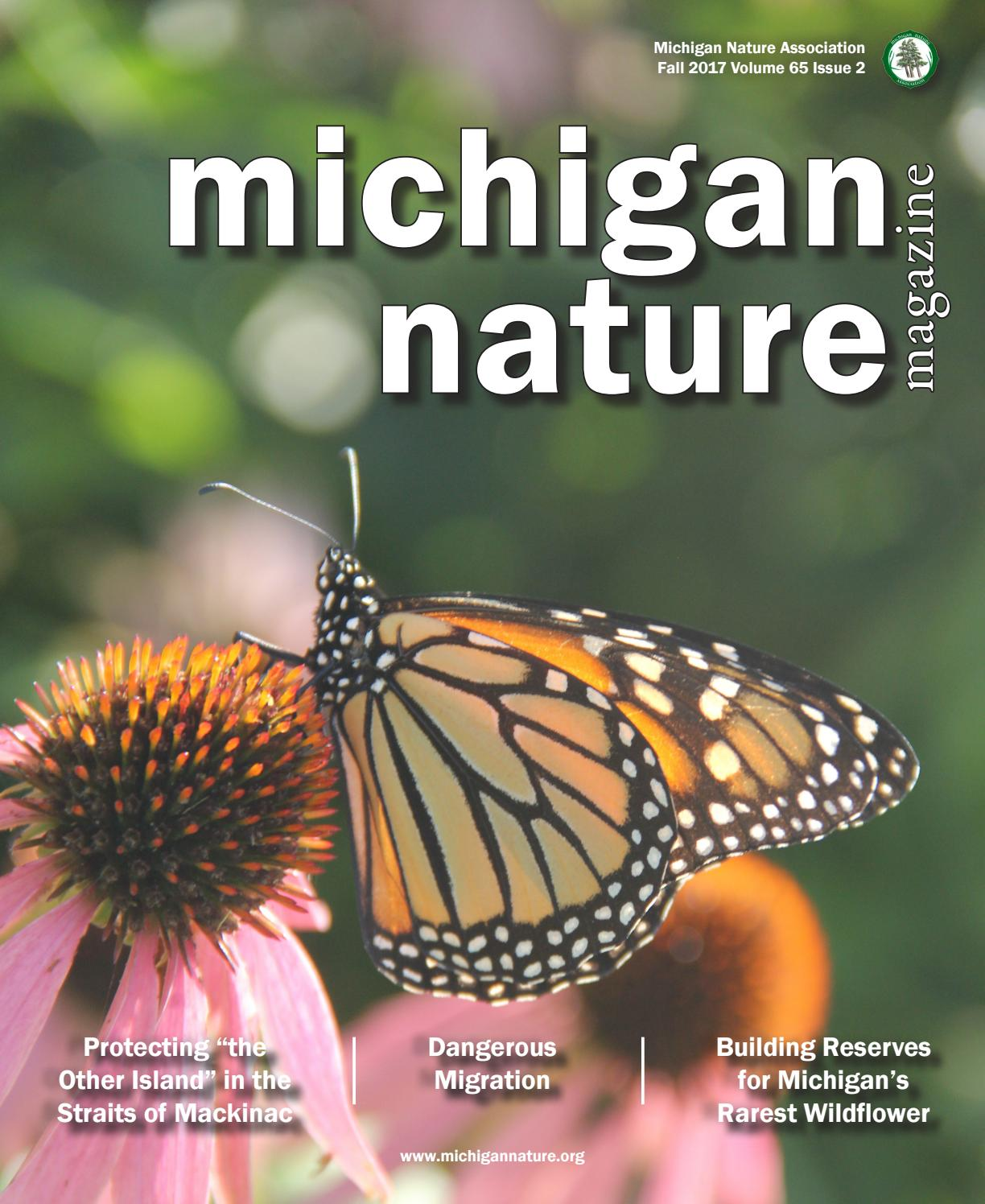 Curtis warnes butterfly chairs michigan artists gallery - Michigan Nature Magazine Fall 2017 By Michigan Nature Association Issuu