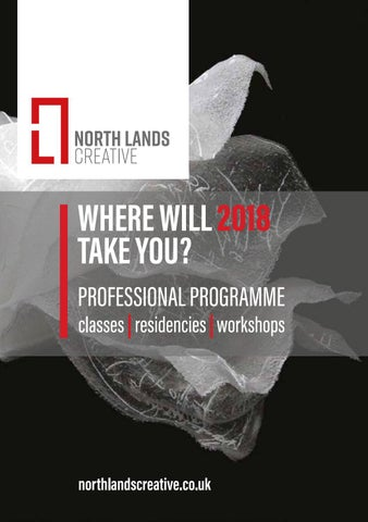 WHERE WILL 2018 TAKE YOU? PROFESSIONAL PROGRAMME