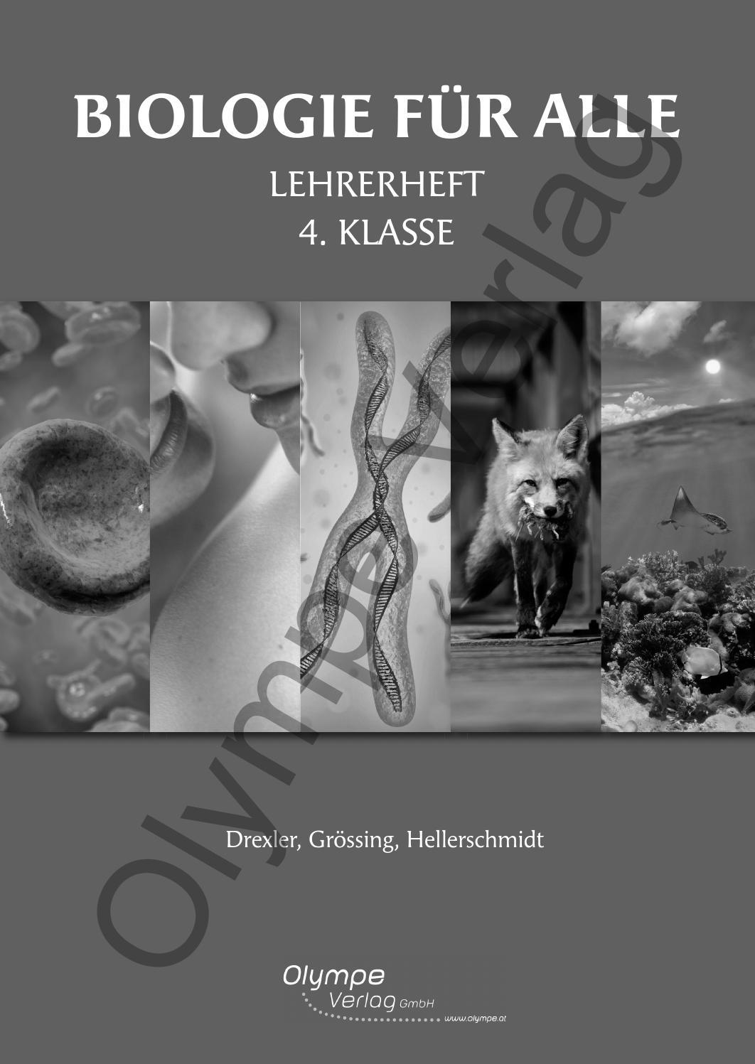 Bu4 lh by Olympe Verlag GmbH - issuu