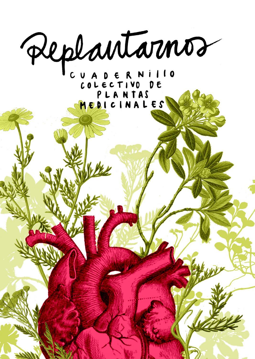 Replantarnos: Cuadernillo colectivo sobre plantas medicinales by ...