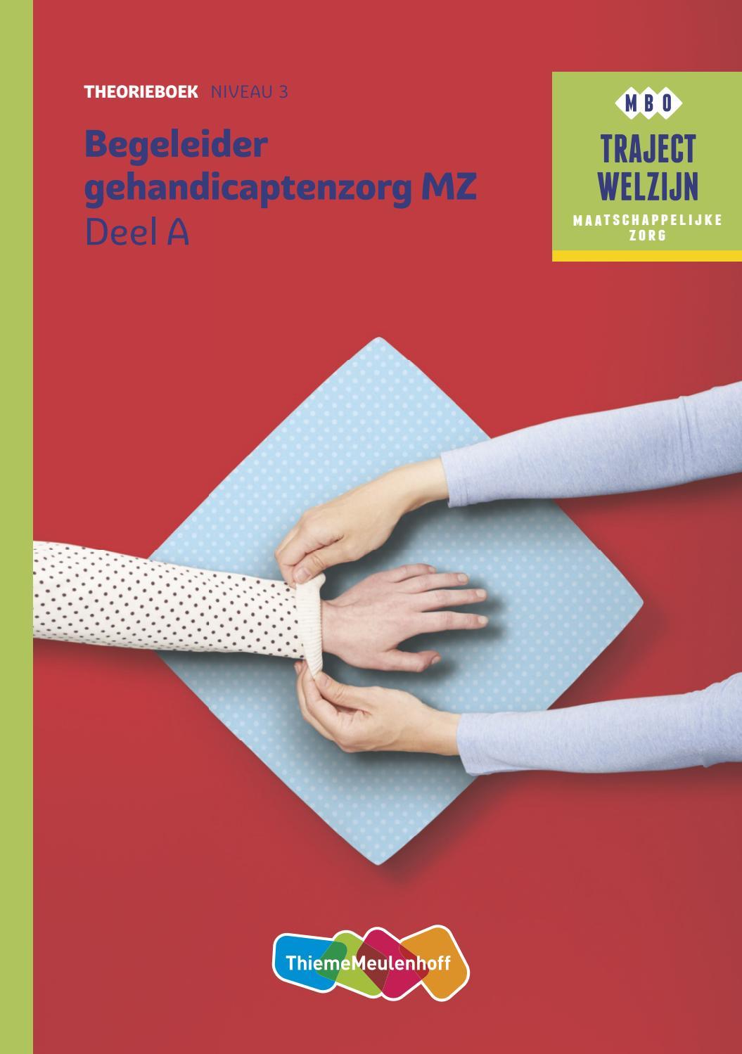 Zitzak Voor Gehandicapten.Begeleider Gehandicaptenzorg Niveau 3 Theorieboek Deel A En B By