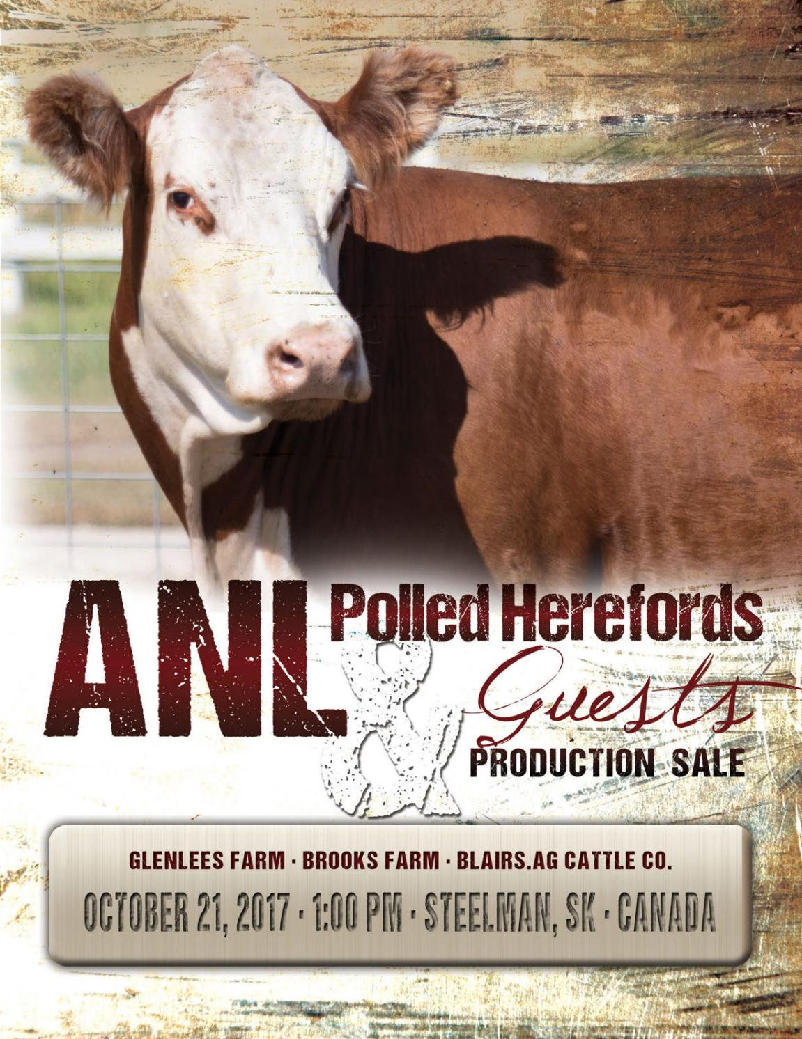 ANL Polled Herefords & Guests Annual Production Sale by