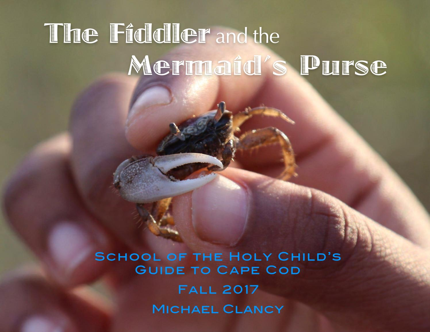 HC Fiddler- Fall 2017 vfinal by School of the Holy Child - issuu