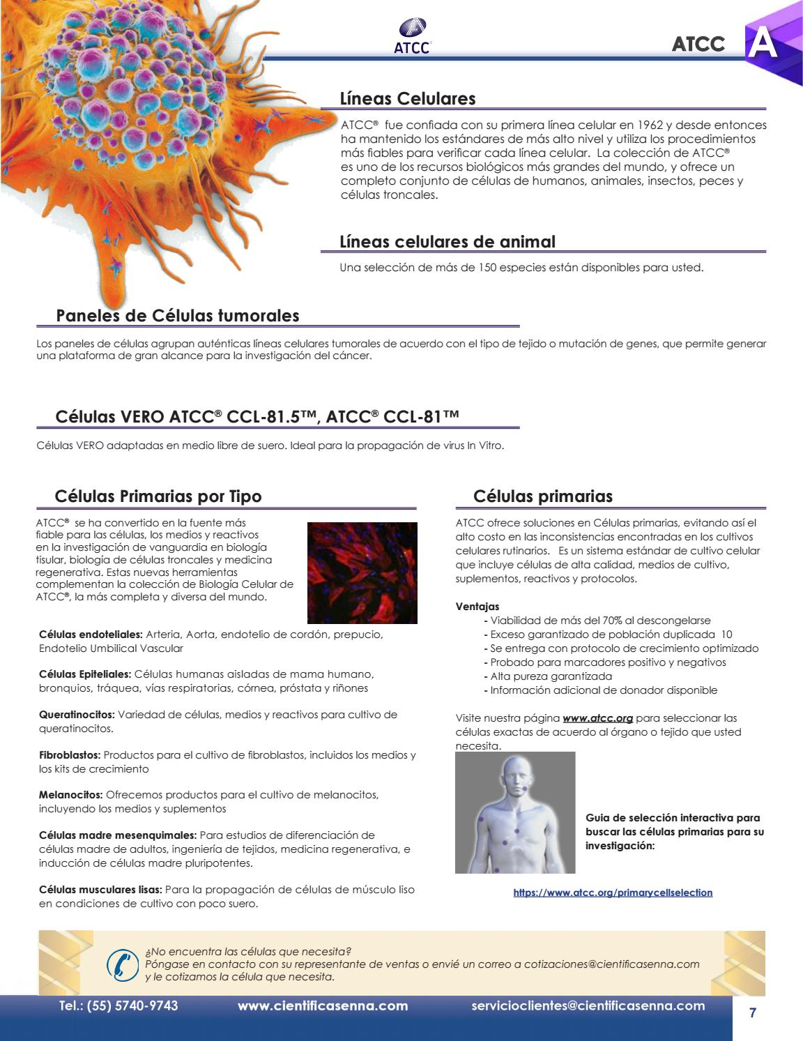 Catalogo Cientifica Senna by Senna Publications - issuu