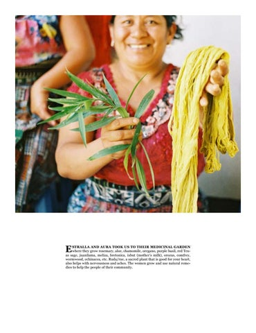 Page 27 of Growing in Guatemala