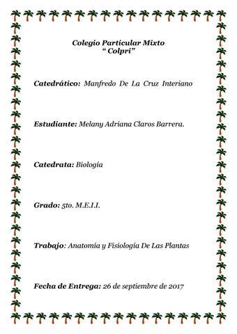 Anatomia y fisiologia de las plantas by Melany Barrera - issuu