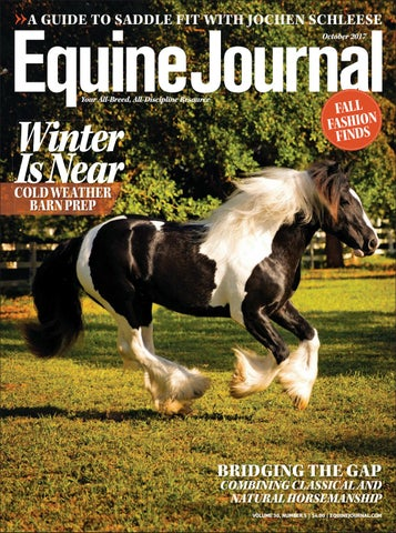 09558eff9 Equine Journal by Cowboy Publishing Group - issuu