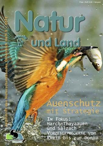 Zwergrohr Frisches Full text