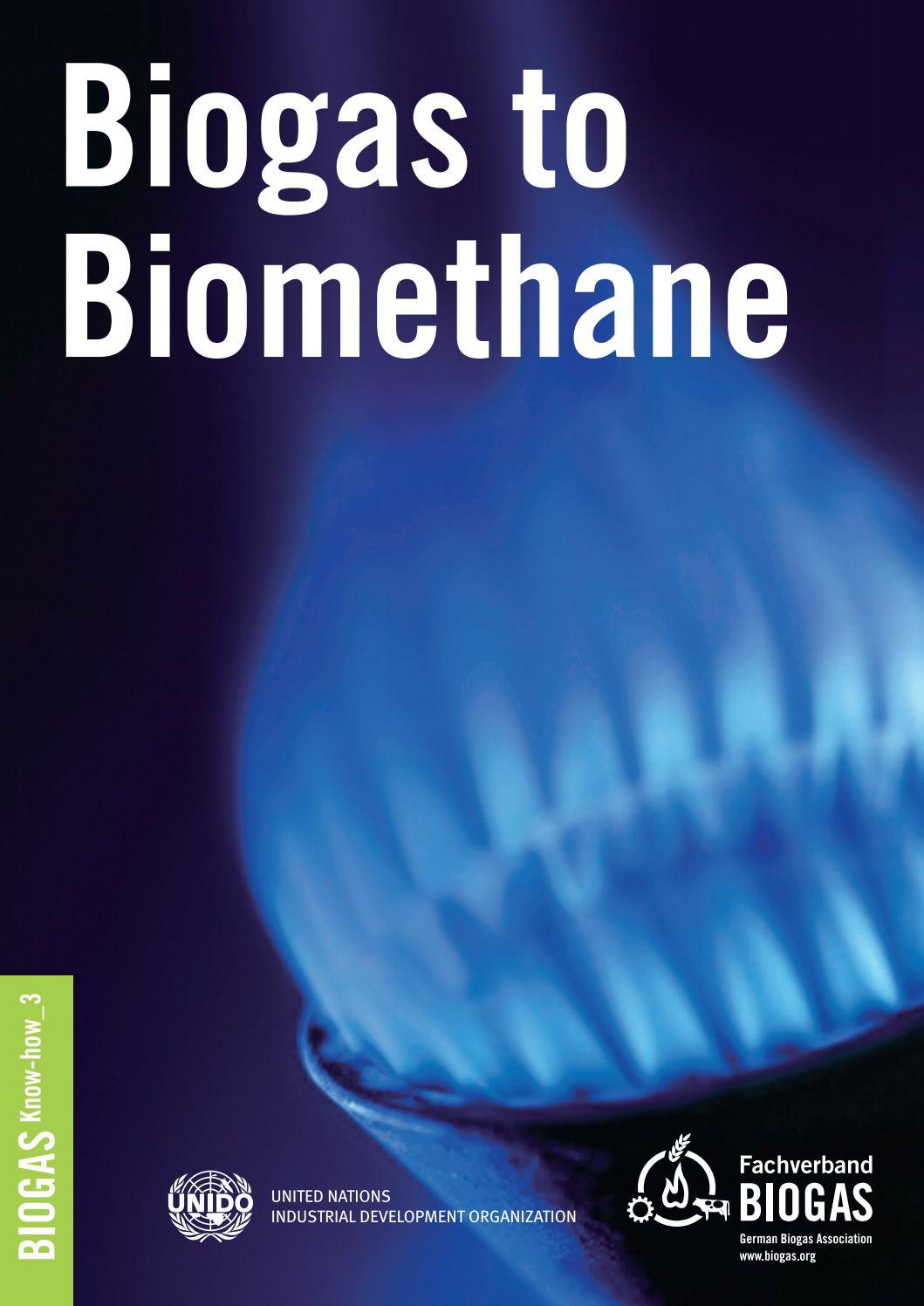 Biogas to Biomethane by Fachverband Biogas e V  - issuu