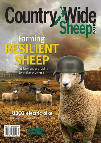 Country-Wide October Sheep 2017 by NZ Farmlife Media - issuu