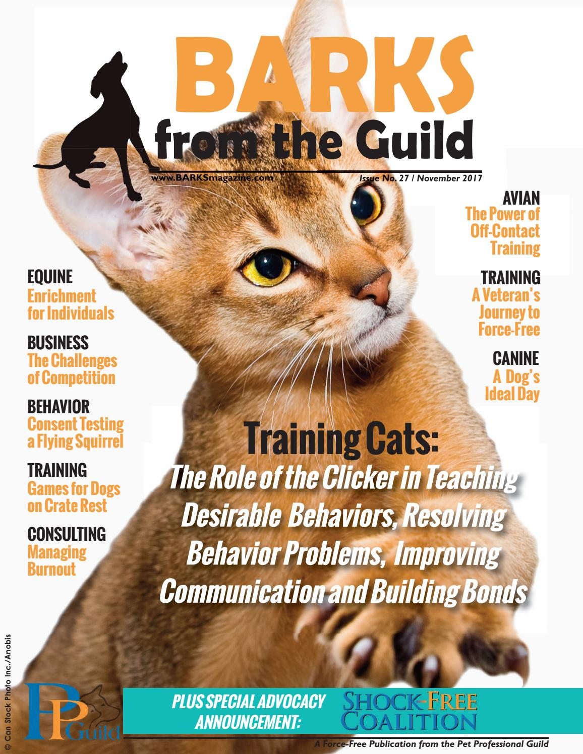 BARKS From The Guild November 2017 By Pet Professional