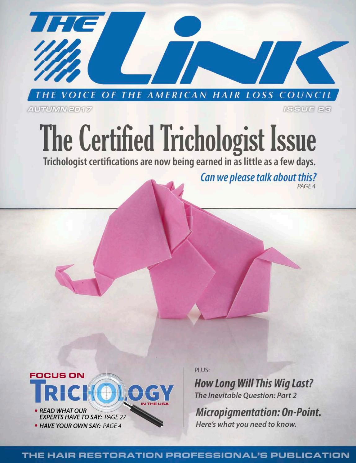 The Link, Issue 23 by The AHLC - issuu