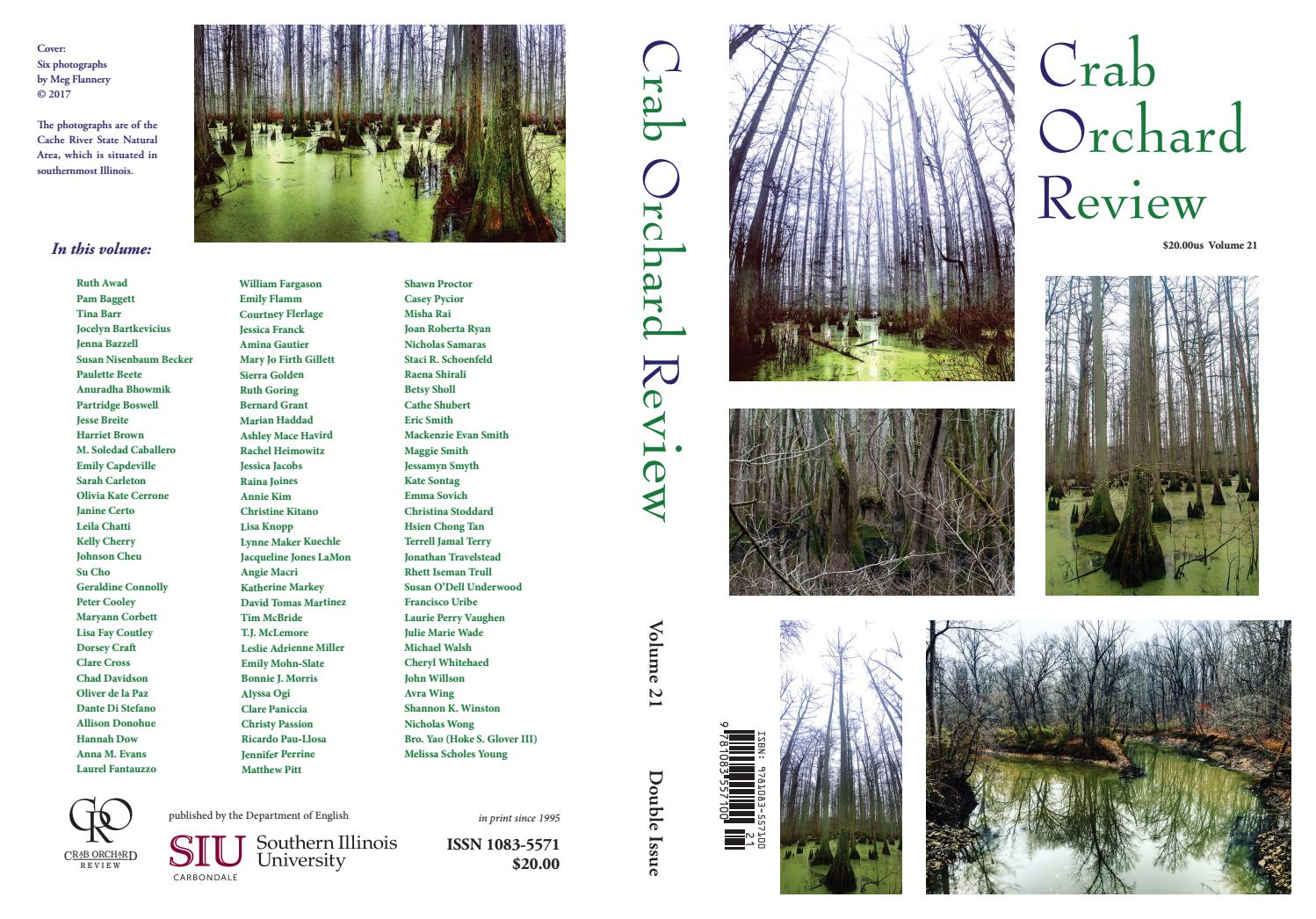 Crab Orchard Review Vol 21 Double Issue 2017 By Circuit Board And Binary Code Forming A Mysterious Night Landscape Of Issuu