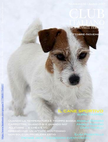 Club Italiano Jack Russell Terrier N14 2017 By Club Italiano