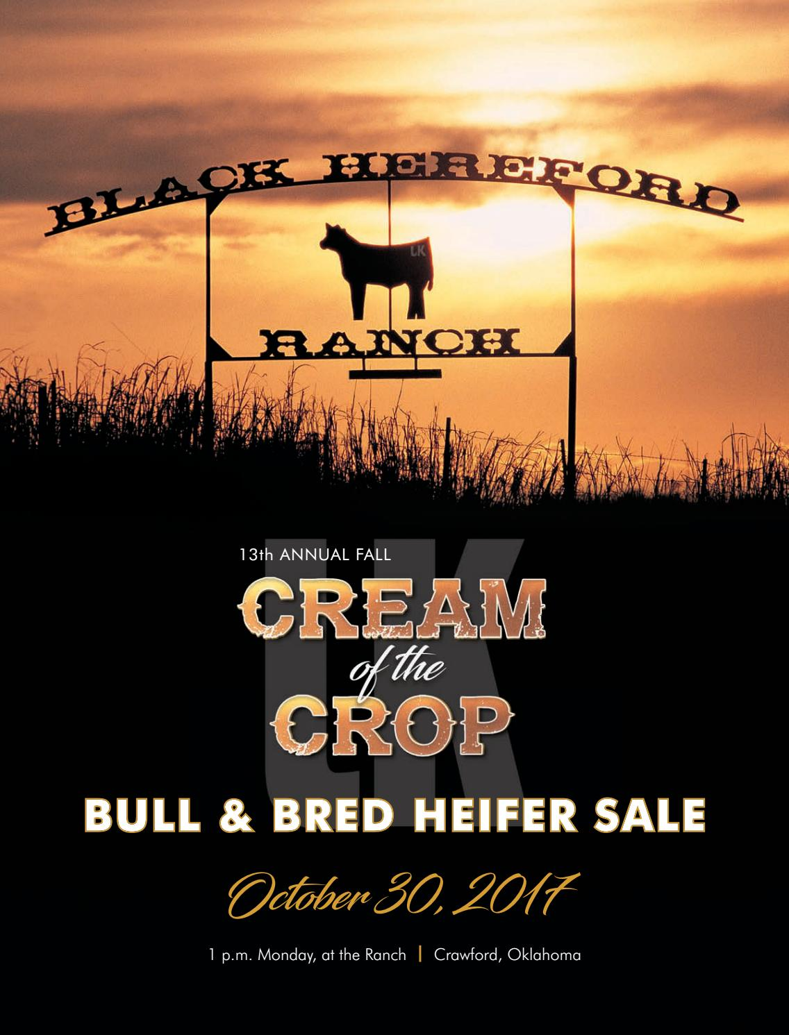 3268c2516 Black Hereford Ranch Fall 2017 Bull   Bred Heifer Sale by Southwest ...