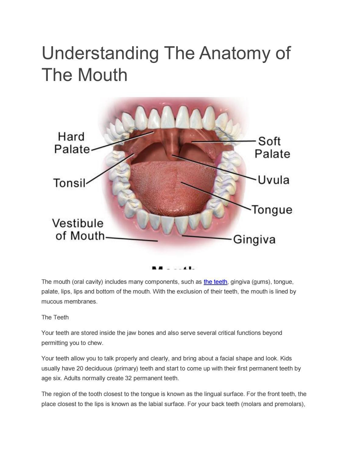 Teeth whitening by seoallweb - issuu