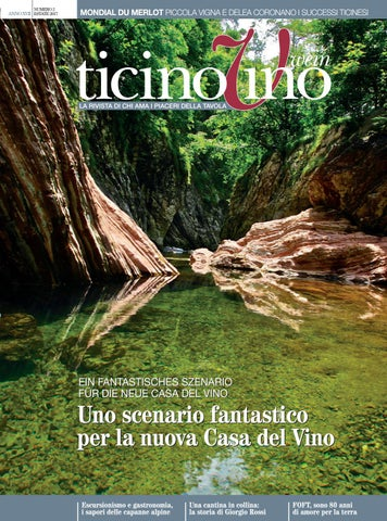 Ticinovino 02 2017 By Rezzonico Editore Sa Issuu