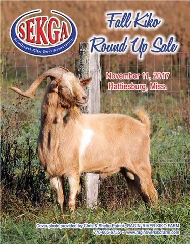 Sekga Sale 11 17 Catalog By Selena Mcintyre Issuu