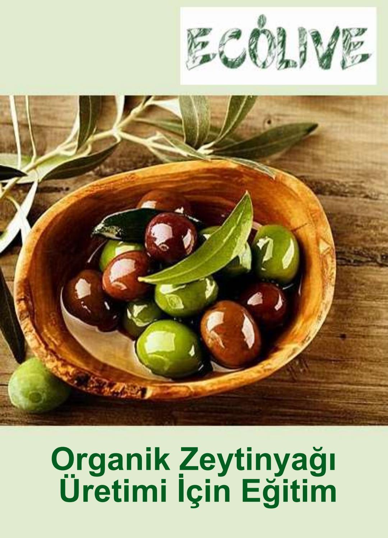 Sinir hastalığına iyi gelen bitkiler ile Etiketlenen Konular