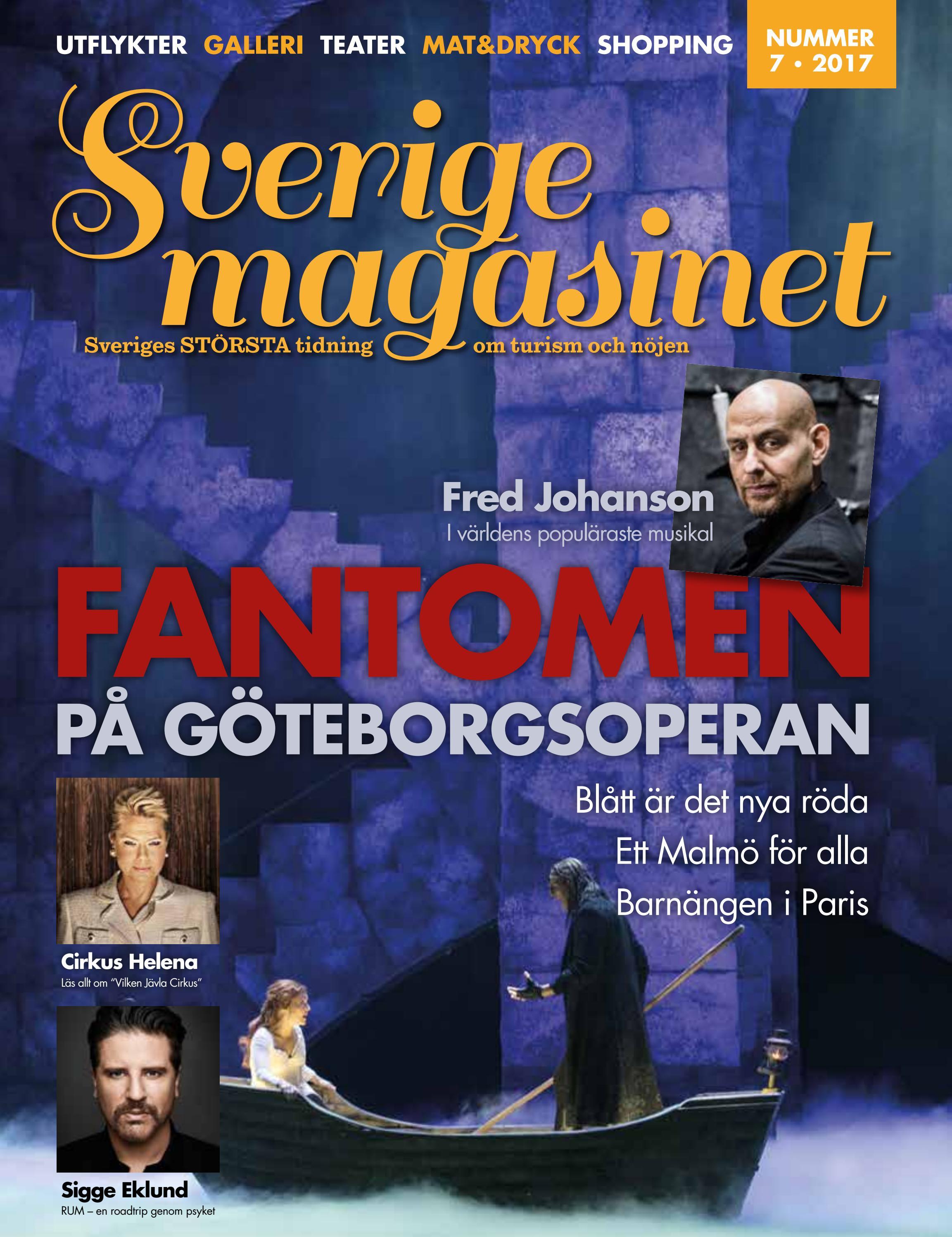 sociala media ledsagare ansiktsbehandling i jönköping