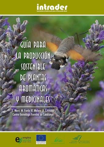 13a303242 Guia para la produccion sostenible de plantas aromaticas y ...