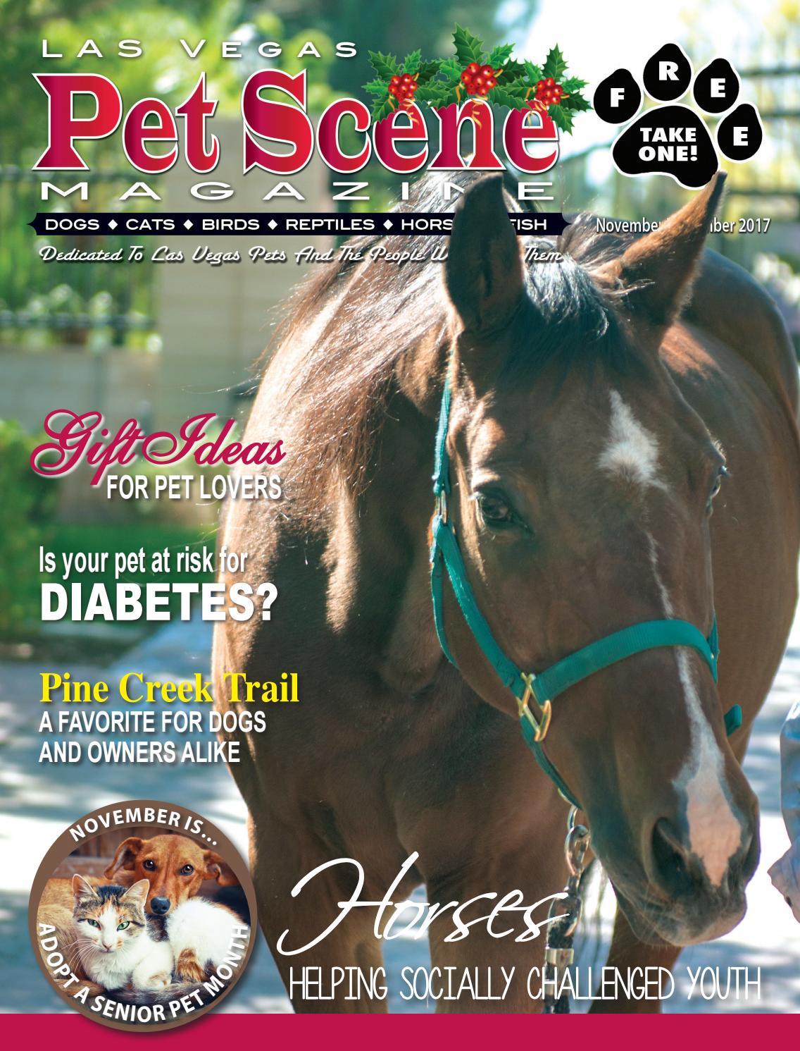 05c26a81ef Las Vegas Pet Scene Magazine – September October 2017 by Homes ...