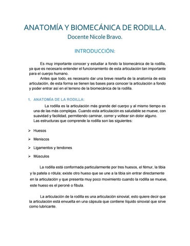 Anatomía y Biomecánica de rodilla by Nicole bravo M. - issuu