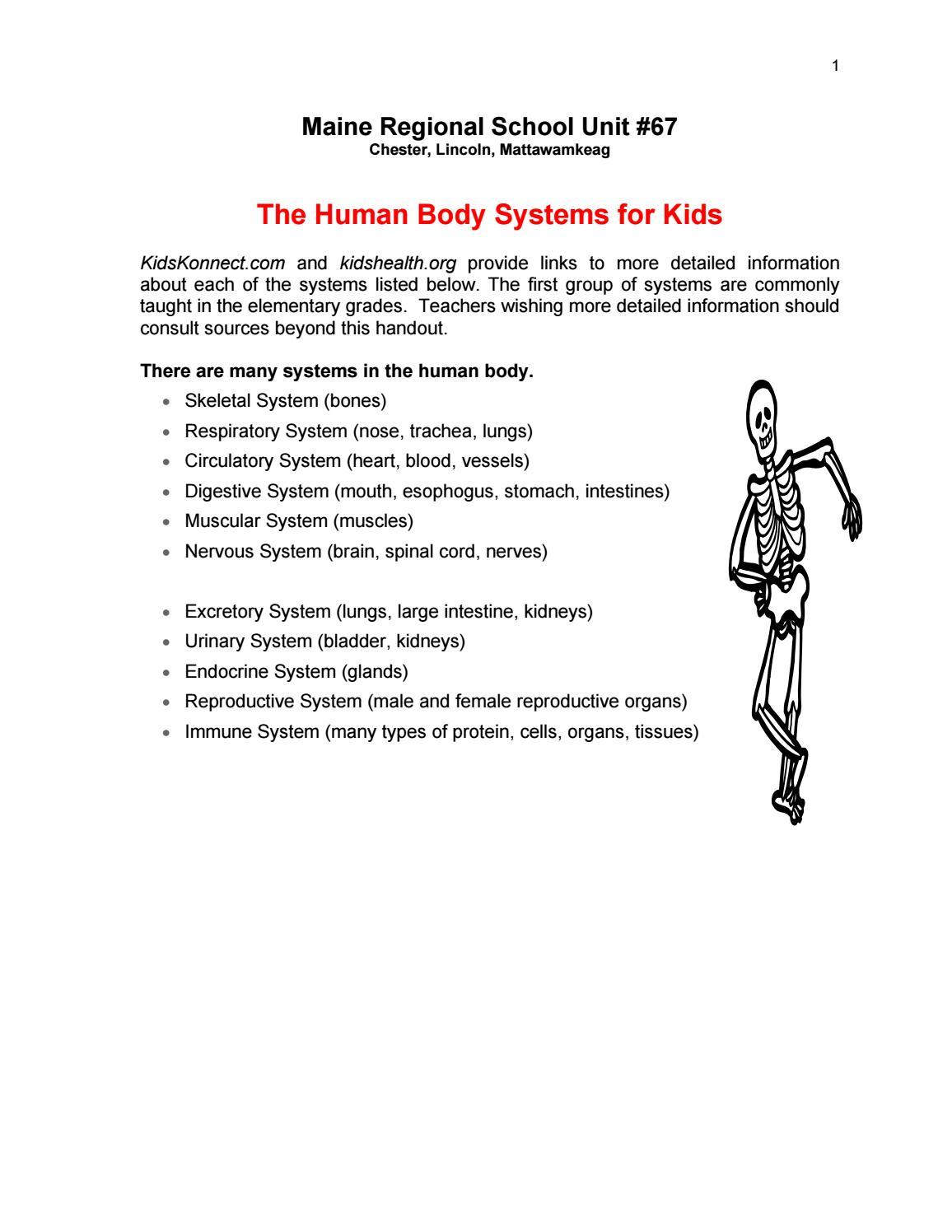 The Human Body Systems By Mjose Darder Navarro Issuu