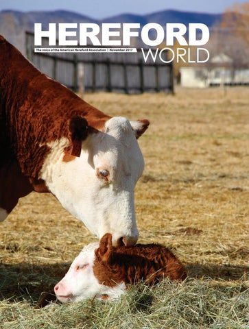 43c7161e5dc American Hereford | November 2017 Archives - American Hereford