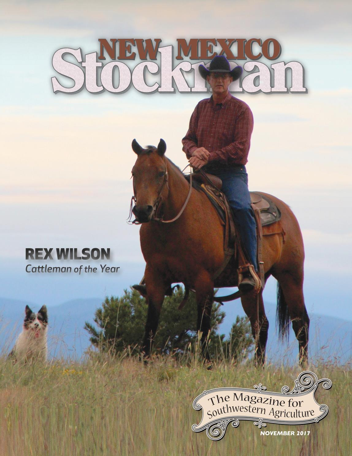 3b092b452 NMS November 2017 by Livestock Publishers - issuu