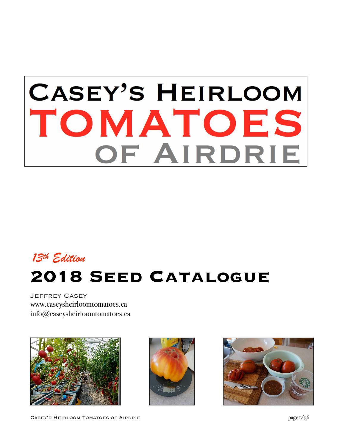 2000 Seeds Heirloom colorful Beautiful rare Solar Yellow Carrot 100 300 1000