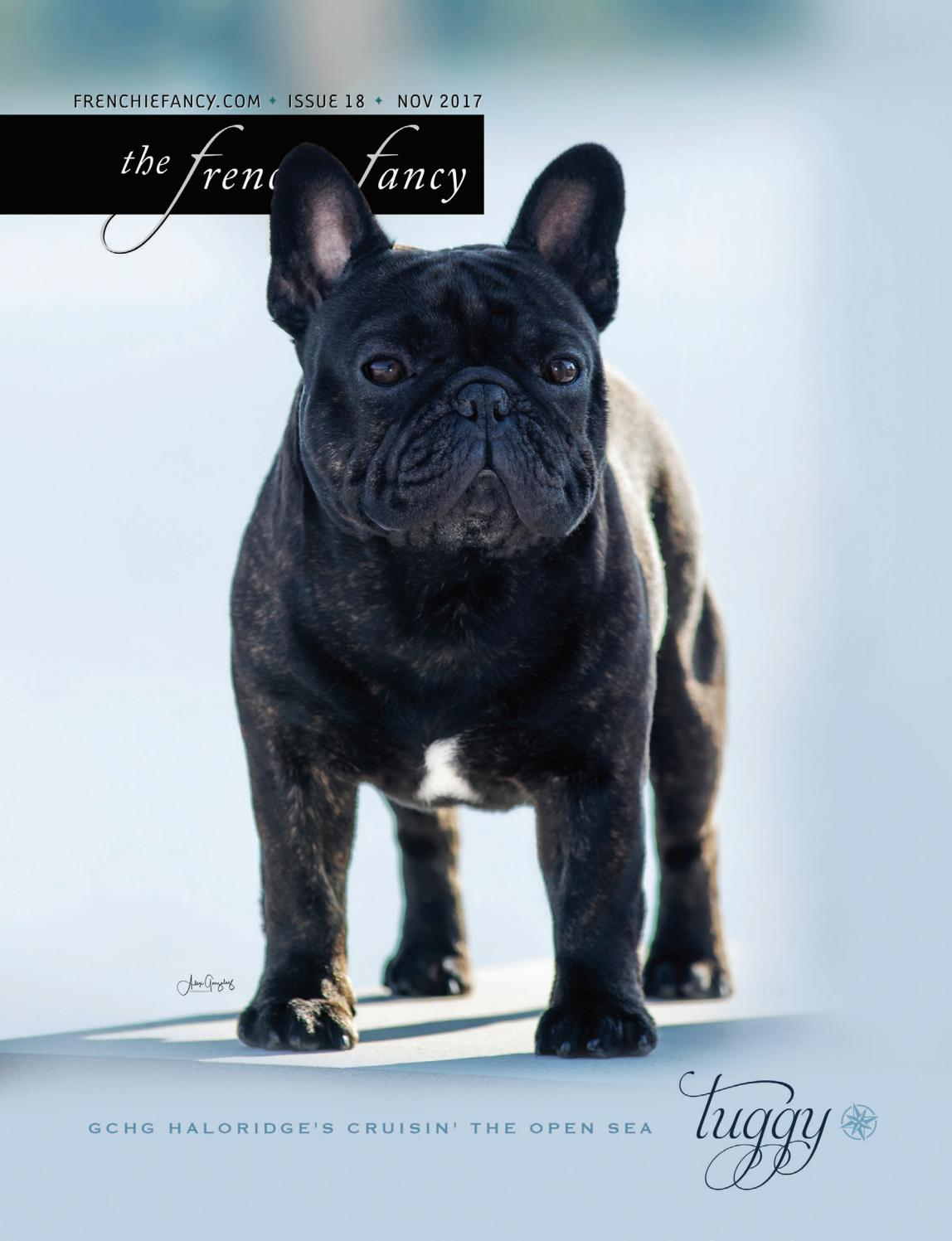 The Frenchie Fancy Issue 18 November 2017 By The Frenchie