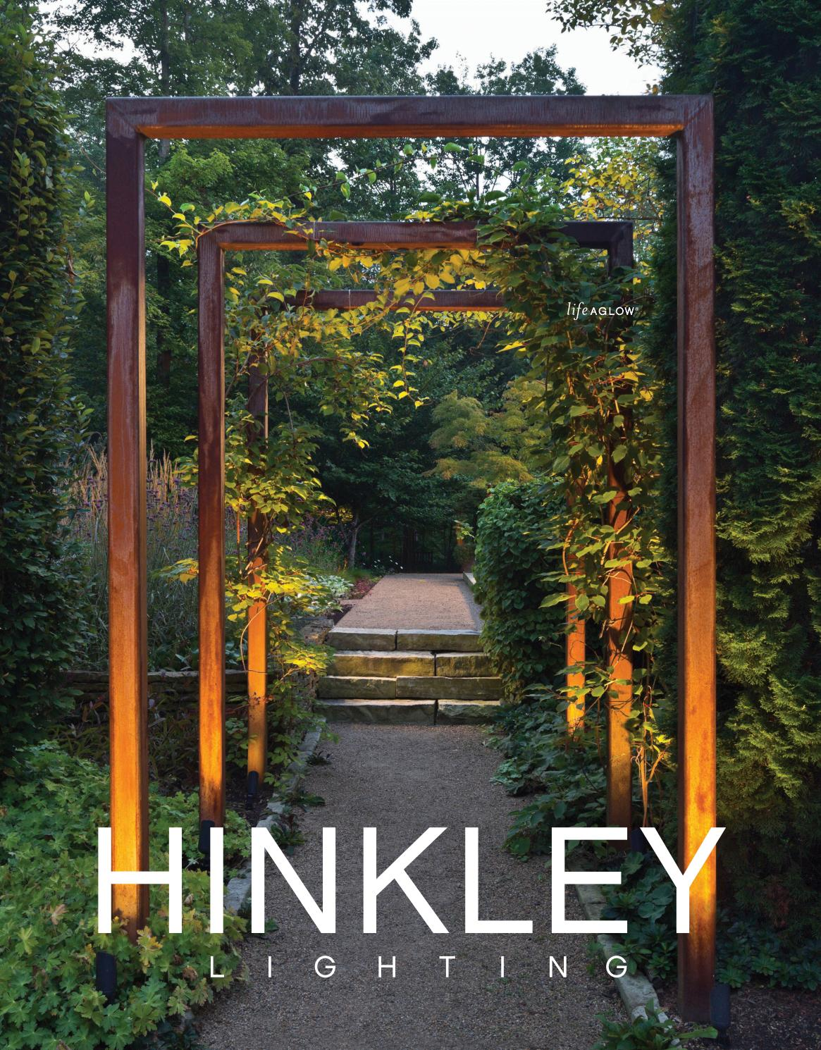 Bronze Hinkley Lighting 1 Light Landscape Flat Top Well Light 15702BZ