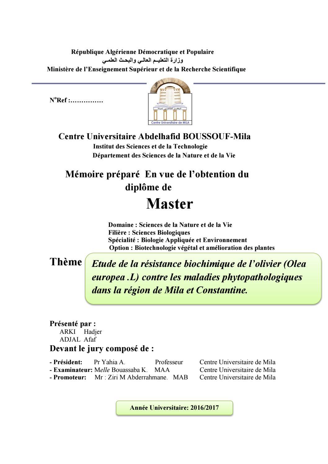 Il Cultive L Olivier mémoire de master milafmohammed abderrahmane ziri - issuu
