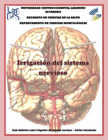 Guía didáctica específica irrigación by Adrian Hernández - issuu