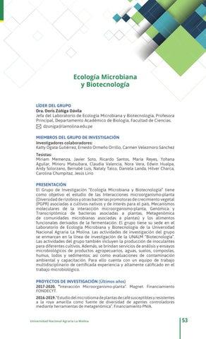 Catálogo de Grupos de Investigación - Unalm 2017 by compendio - issuu