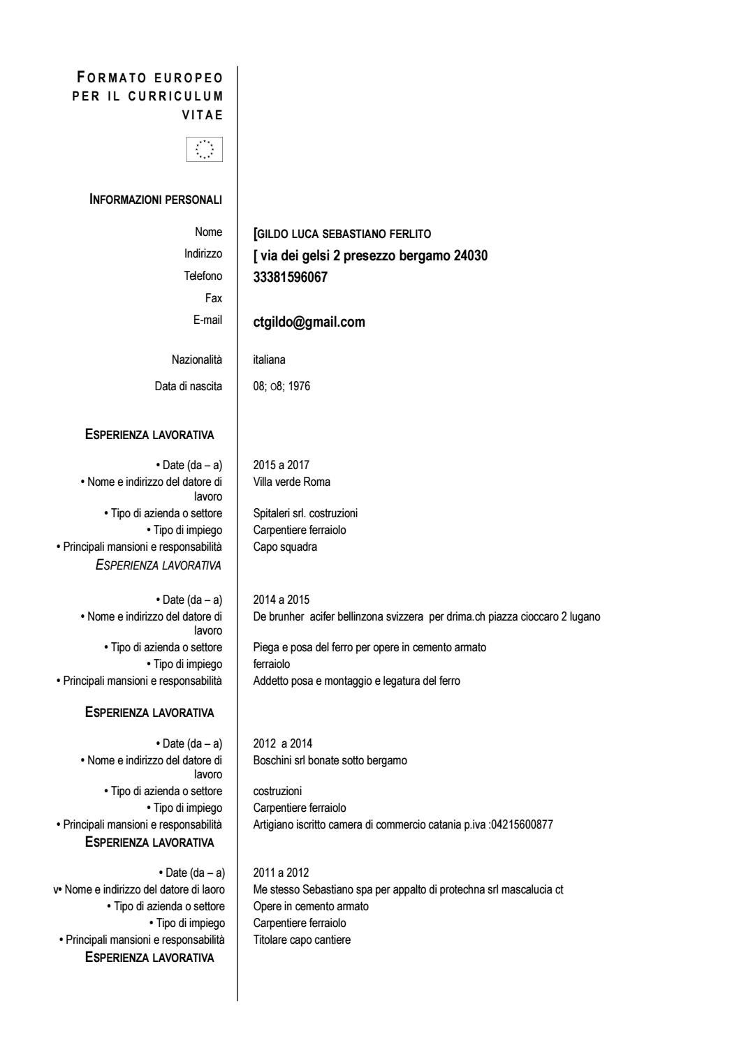 Carpentieri Edili In Svizzera modelo di curriculum vitae europeo (1) by ferlito gildo - issuu