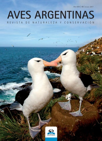 a0d553290ed71 Revista Aves Argentinas by Aves Argentinas - issuu