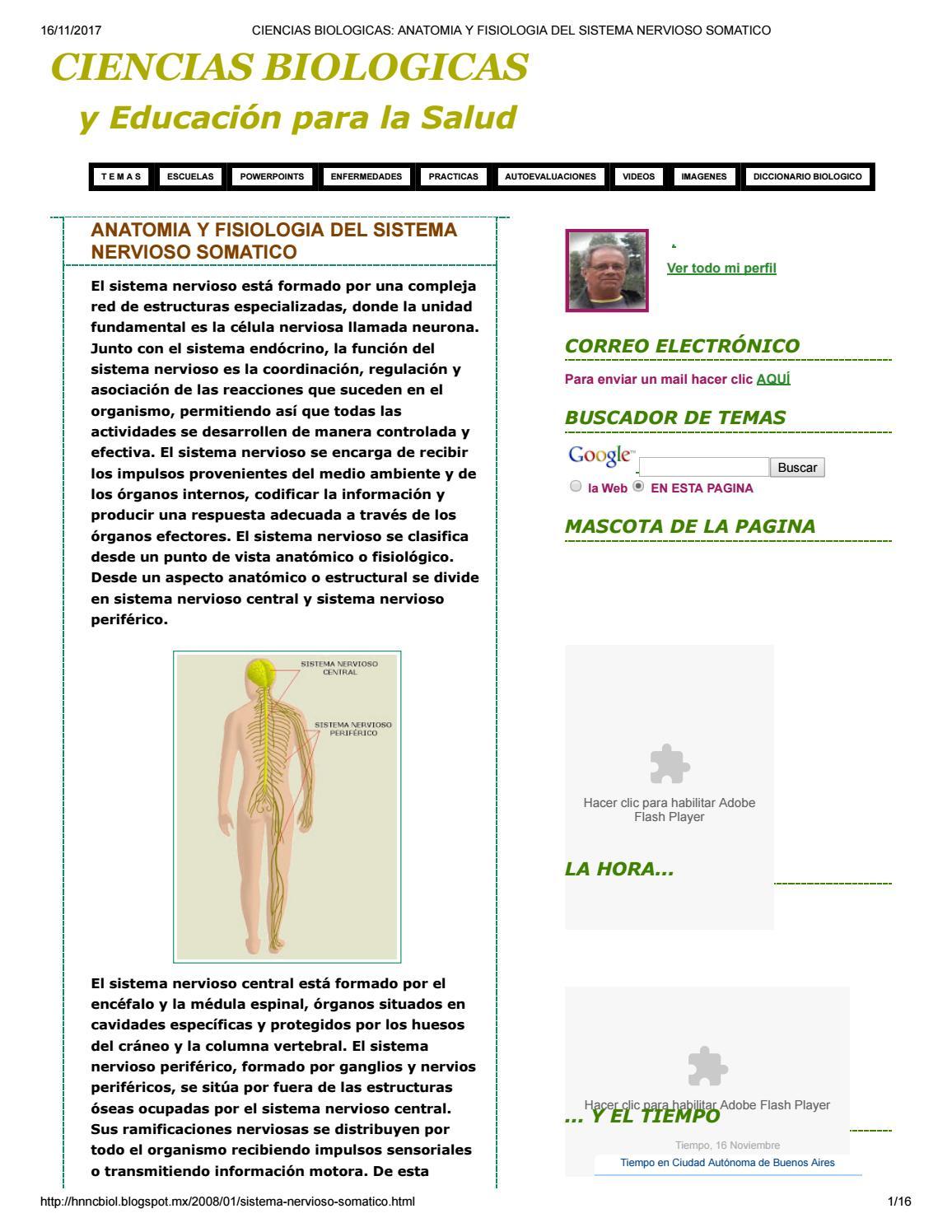 Ciencias biologicas anatomia y fisiologia del sistema nervioso ...
