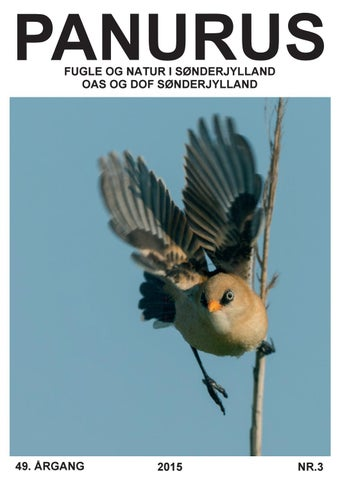 dof sønderjylland